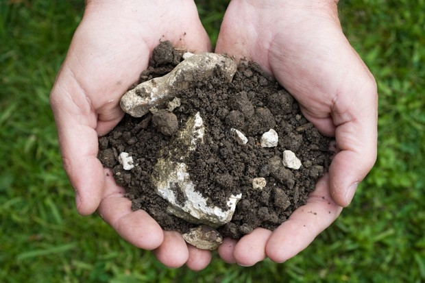 chalky-soil-2