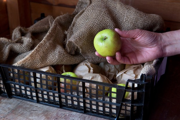 Storing apples in brown paper and hessian