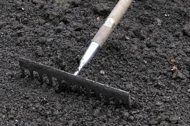 Raking soil in a greenhouse bed
