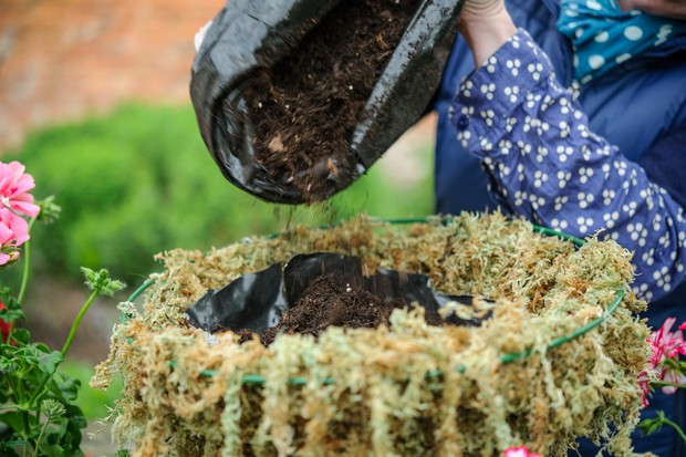 Adding compost to the hanging basket