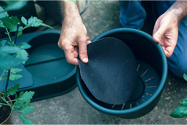 Watering kit - adding a filter disc to the pot