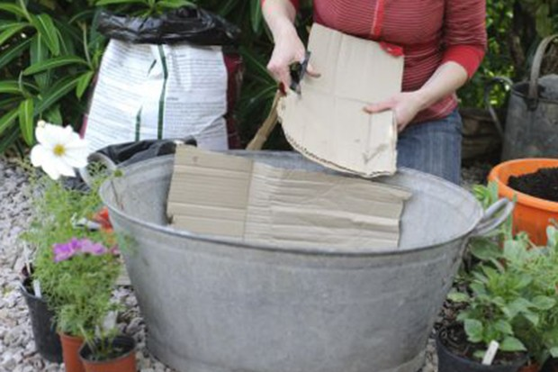 Lining the container with cardboard