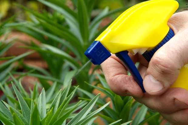 features-for-wildlife-stop-using-chemicals-3