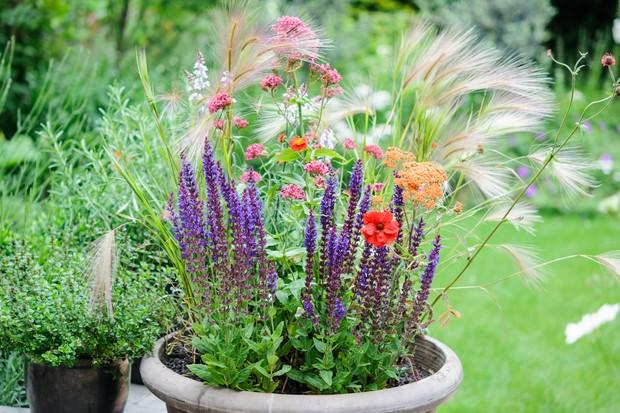 meadow-pot-2