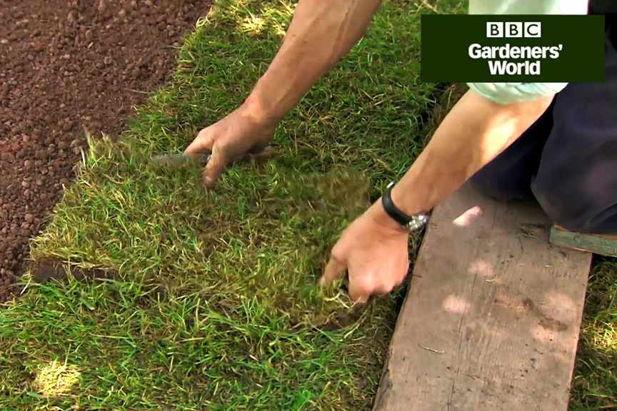 How to lay rolls of lawn turf video