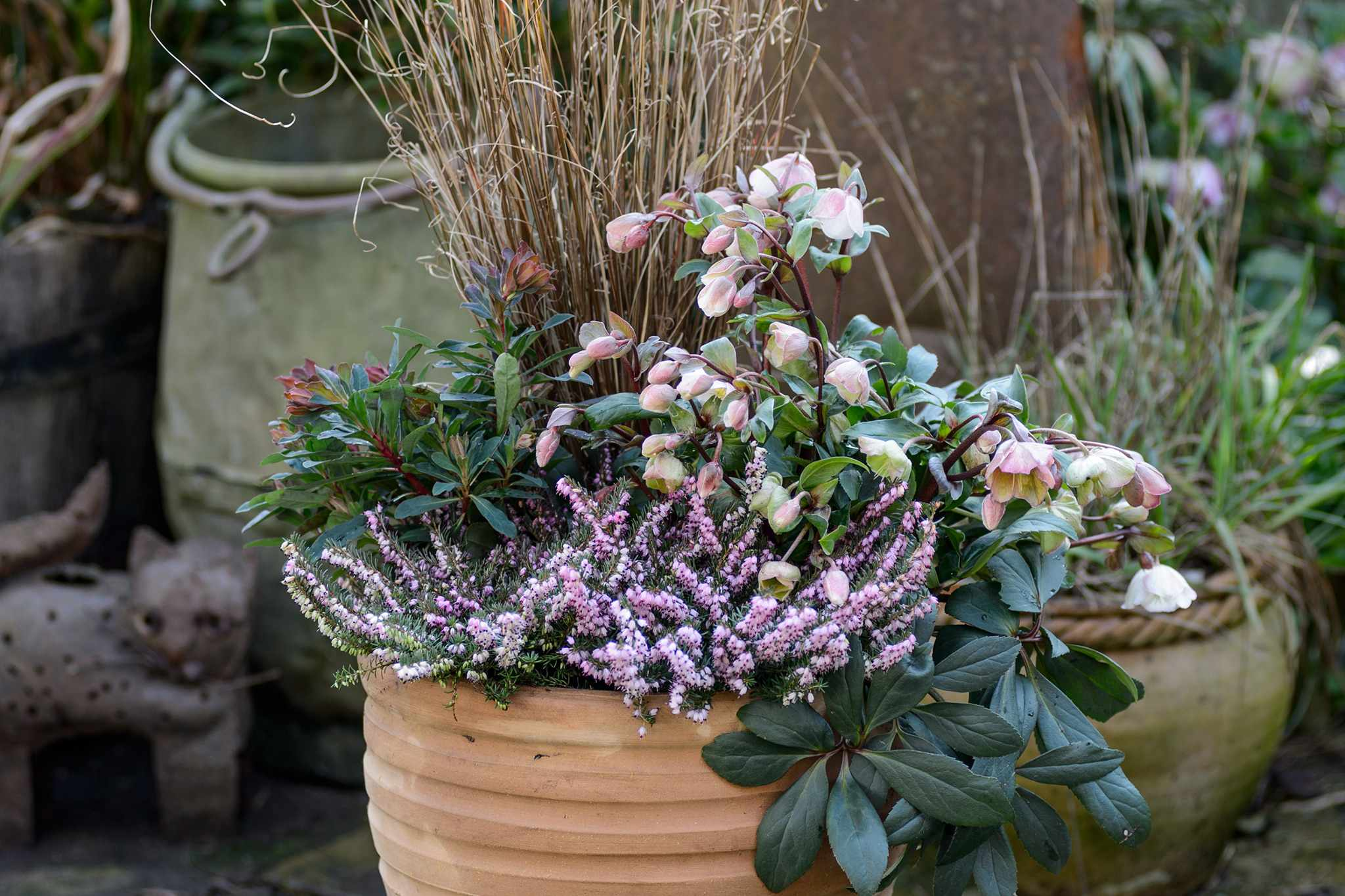 Hellebore and Heather Container