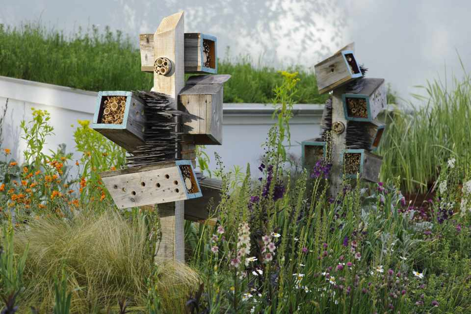 Nine Bee Hotel Ideas (In Pictures)