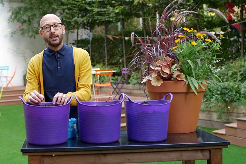 Choosing compost for pots