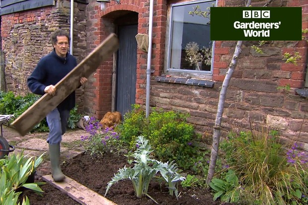 How to prepare a border for planting