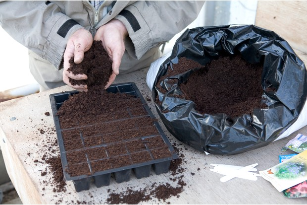 Create a wildflower meadow - filling a seed tray with compost