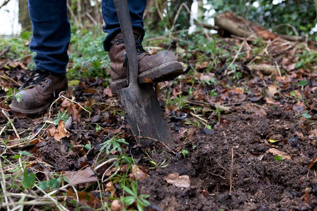 How to make a stumpery - digging a hole