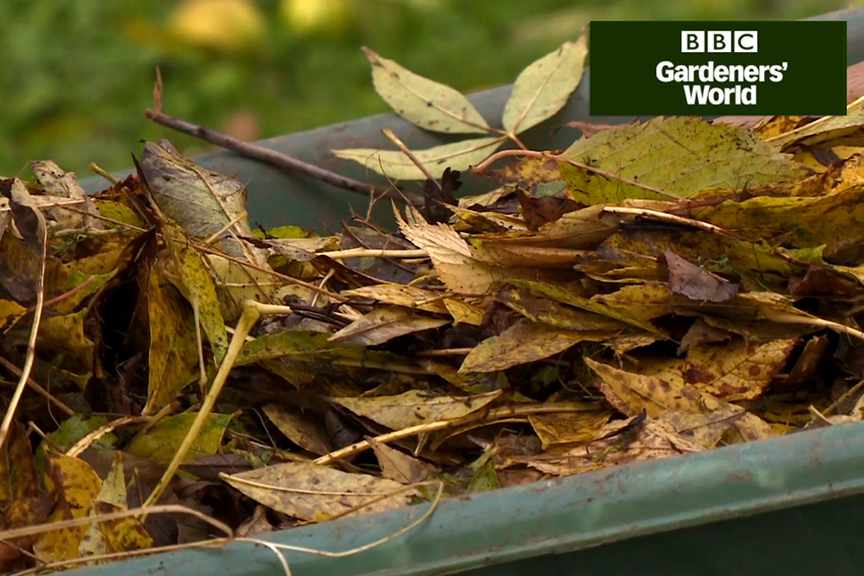 How to make leafmould video