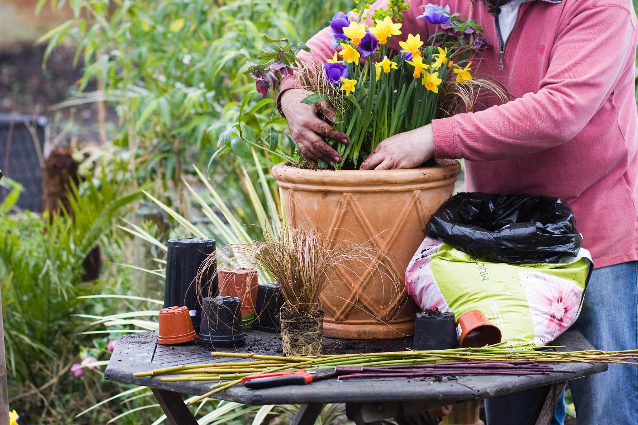 Planting up a spring container