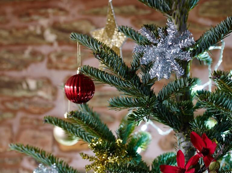 How To Stop Christmas Tree Needle Drop Bbc Gardeners World Magazine