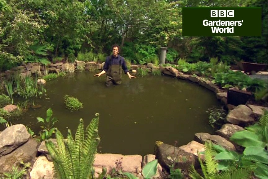 How to plant water lilies in a pond video