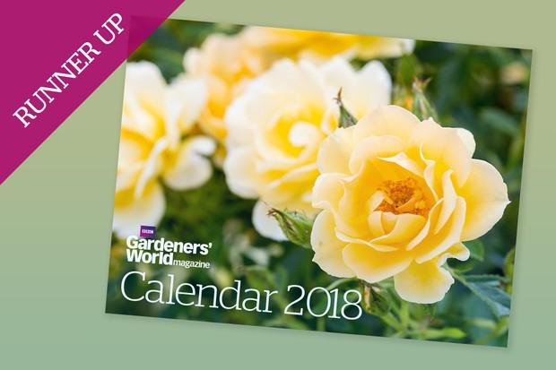 calendar-2018-runner-up-rose-2