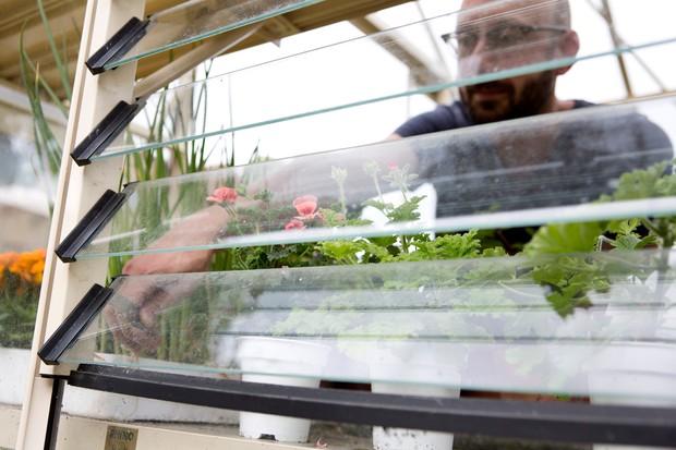keep-indoor-tomatoes-well-ventilated-3