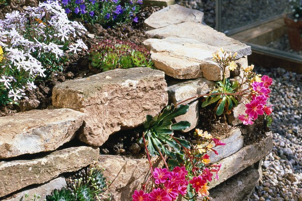 A garden stone wall without mortar, leaving gaps for plants and nesting bees