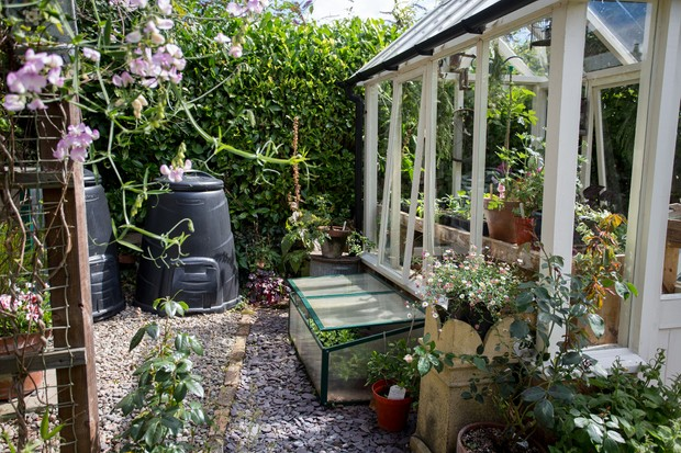 rectangular-greenhouse-3
