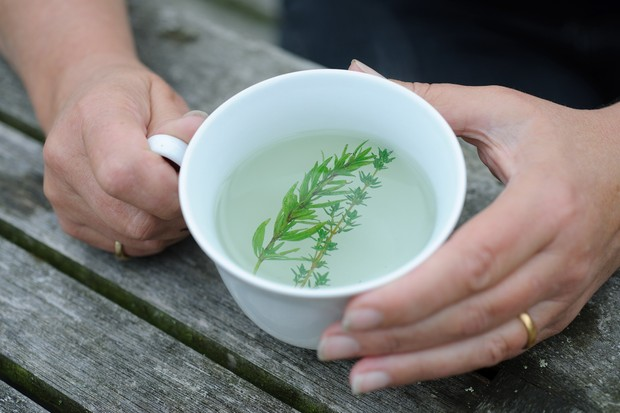 hyssop-and-thyme-tea-2