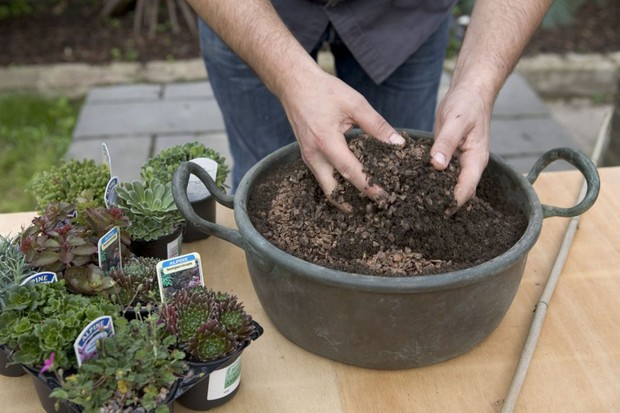 Alpine container - mixing compost with horticultural grit