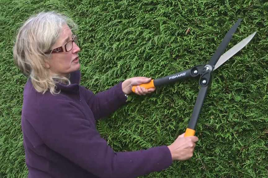 Trimming a hedge video