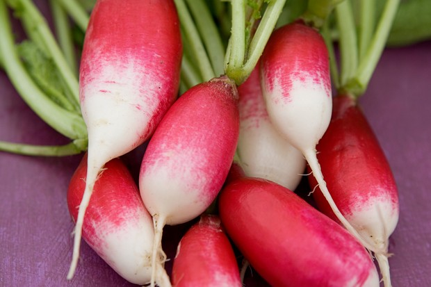 radish-french-breakfast-9