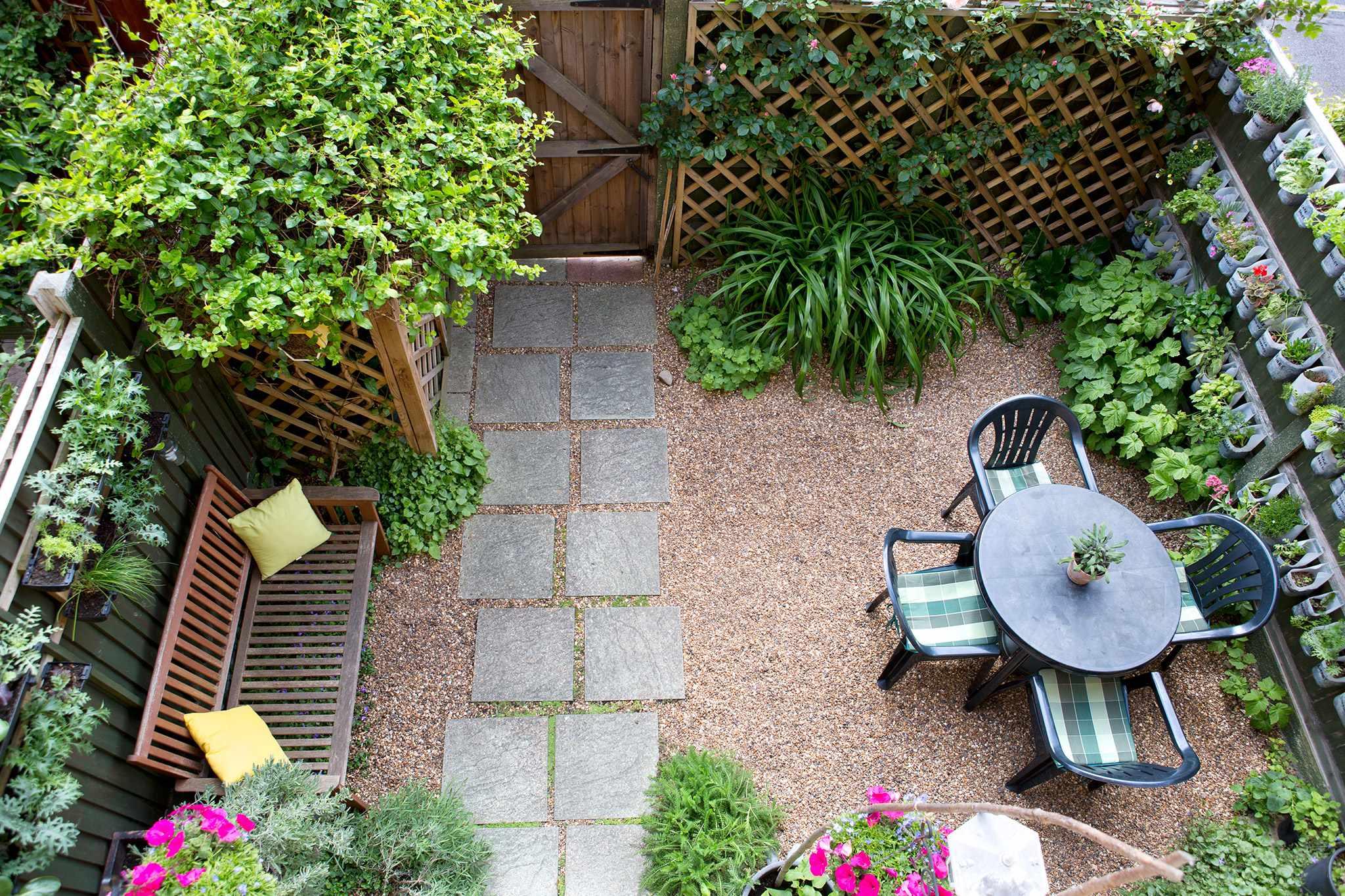 Planting Ideas for Garden Walls