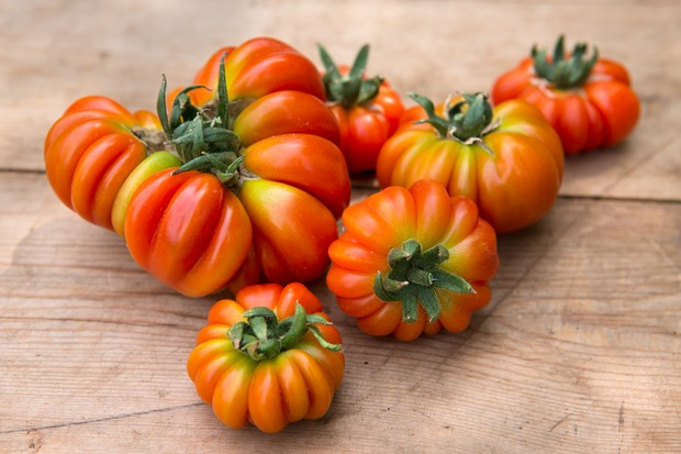 Large 'Costoluto Genovese' tomatoes