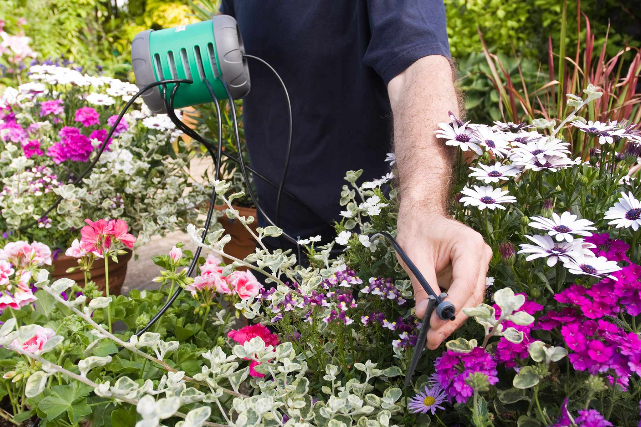 Gardening Tips for Older People