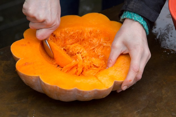 scooping-out-pumpkin-flesh-2