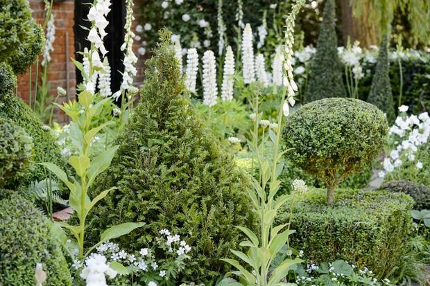 topiary-2