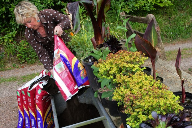 How to create an exotic container display - adding compost