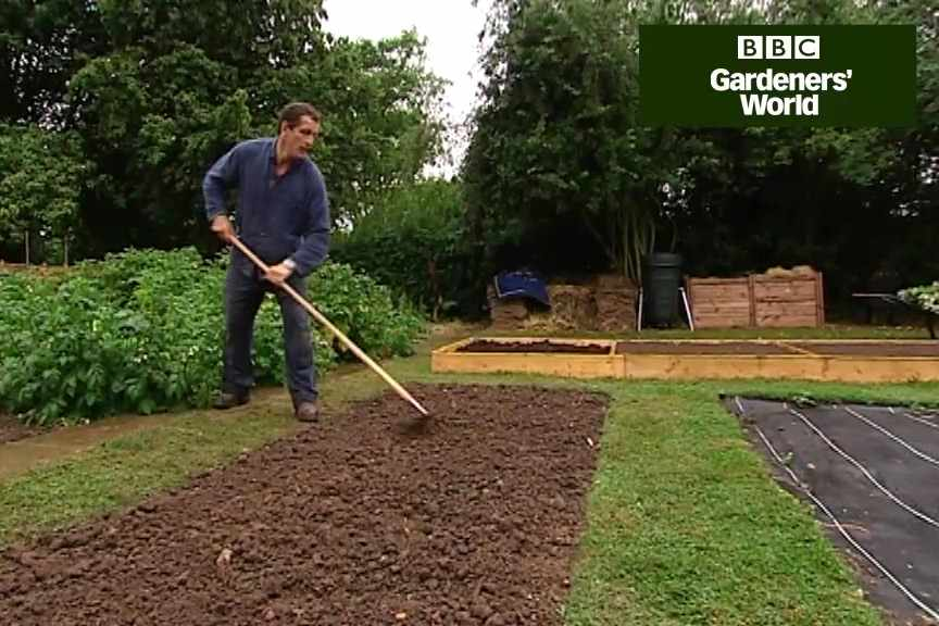 How to improve soil with green manure video