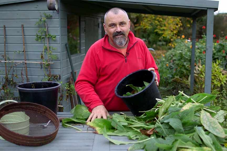 Making comfrey liquid fertiliser NFG video