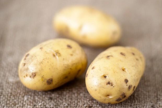 early-potatoes-3