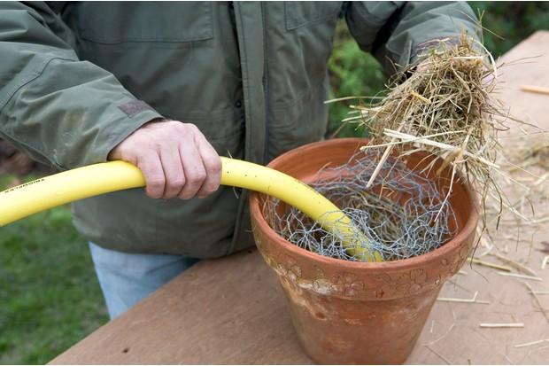 Adding a length of hose to the pot