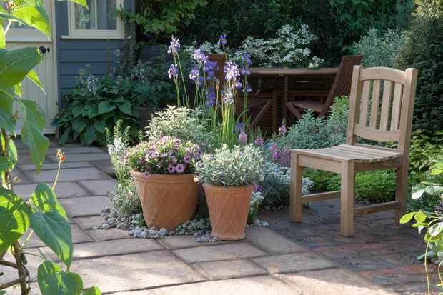 Ideas for Shady Courtyard Gardens