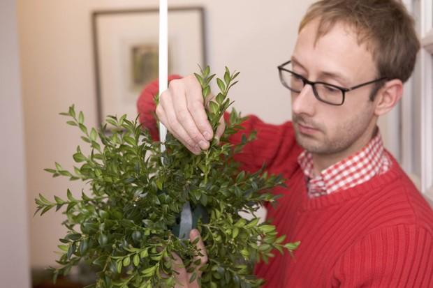 Mistletoe and box Christmas ball - adding box