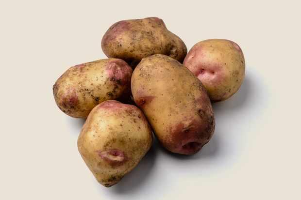 potato-king-edward-3