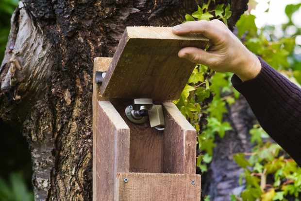 How to install a nest box camera