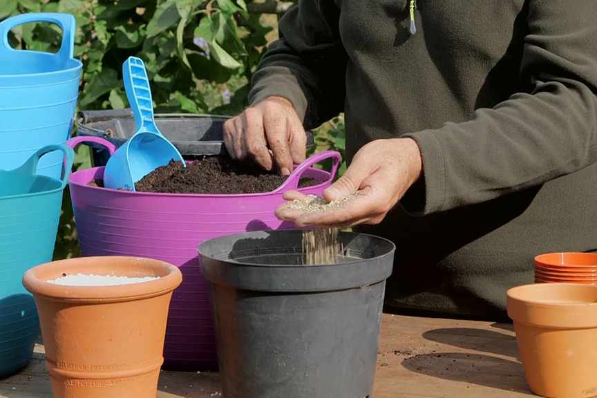Choosing compost for propagation