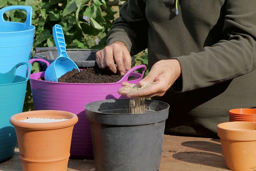 Choosing compost for propagation video