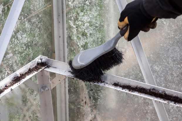 brushing-debris-from-greenhouse-framing-2