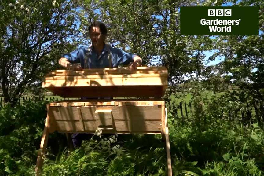 Keeping a top bar beehive (part one)