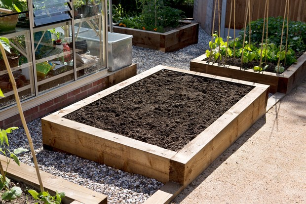 Raised beds for growing veg