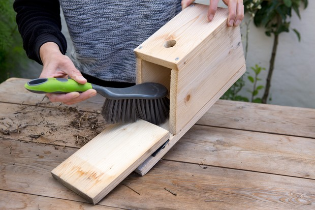 Brushing out the nest box