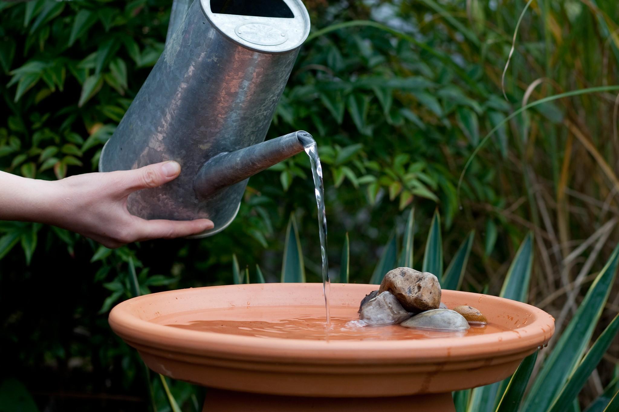 Pot and saucer bird bath
