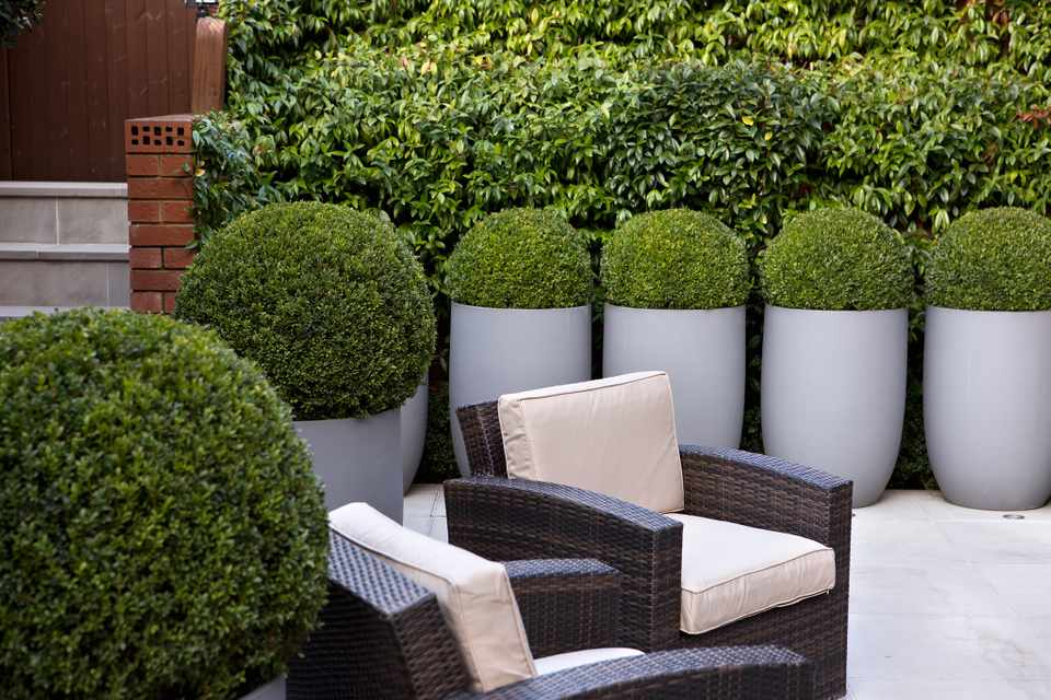 Tips for Designing a Courtyard Garden - BBC Gardeners ...