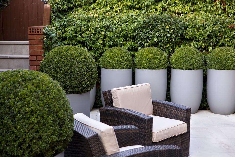 Tips For Designing A Courtyard Garden Bbc Gardeners World Magazine